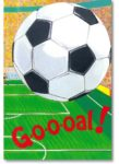 Fußballbuch Goaal
