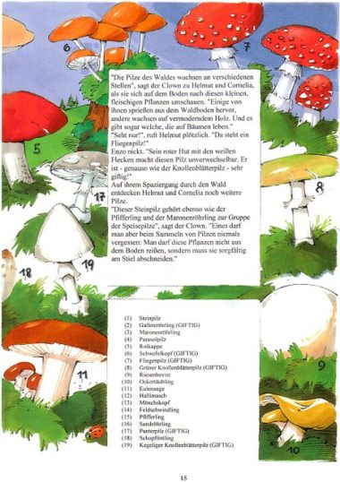 Naturbuch Pilze