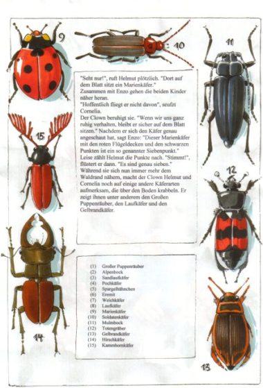 Naturbuch Käfer
